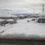 帰国早々大雪ですっ